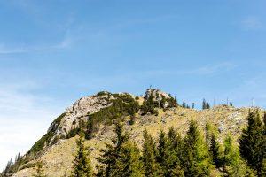 Wanderweg zum Gipfel - Letzter Abschnitt