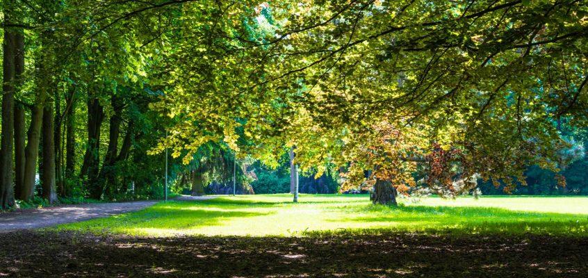 Linzer Hummelhof-Park