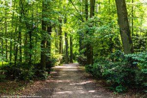 Hummelhof-Park in Linz