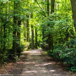 Hummelhof-Park 1