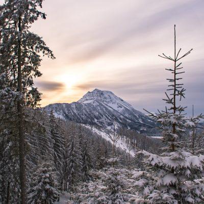 Abendliche Winterlandschaft mit Blick auf den Ötscher